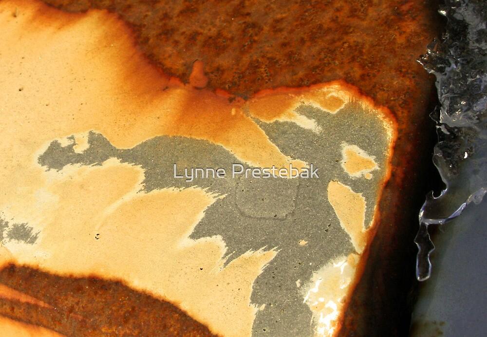 patterns made  by rust by Lynne Prestebak