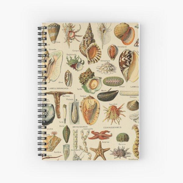 Sealife et coquillage illustration Cahier à spirale
