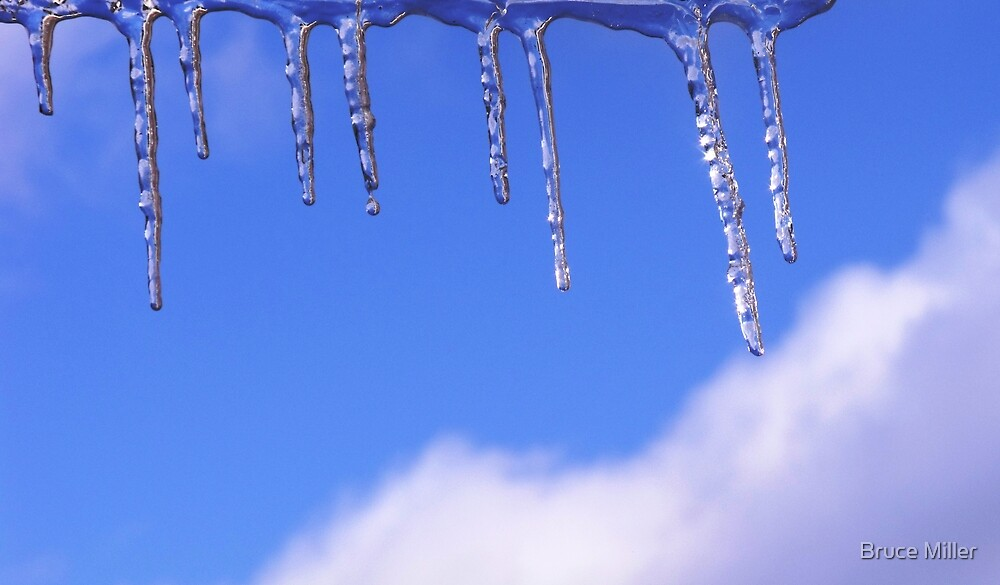 icicles by Bruce Miller