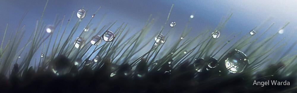 Magical Drops by Angel Warda