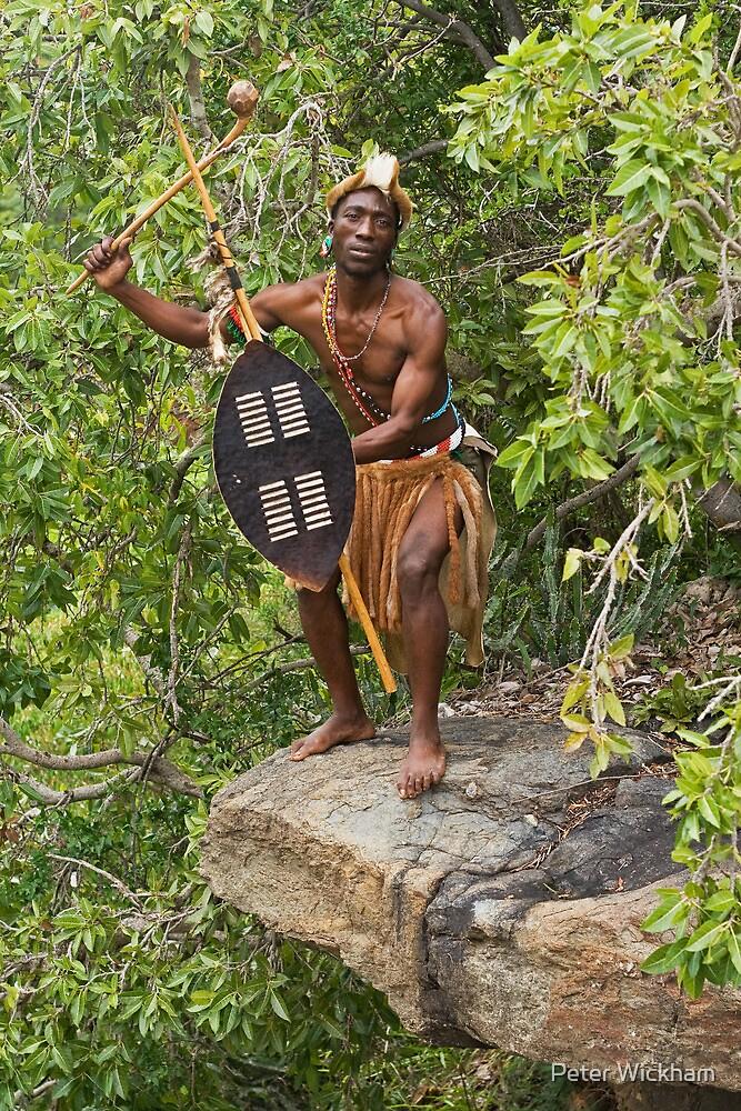 Zulu Warrior by Peter Wickham