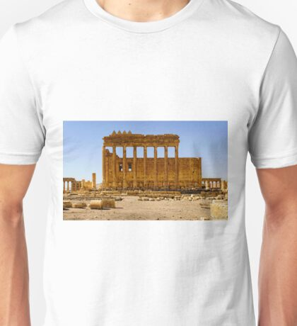 Palmyra - Before The Desecration  T-Shirt