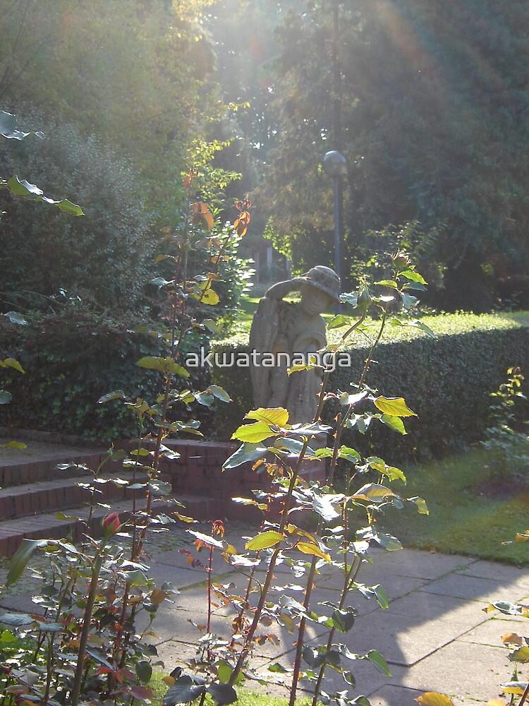 a quiet sunny November afternoon at the rose garden by akwatananga