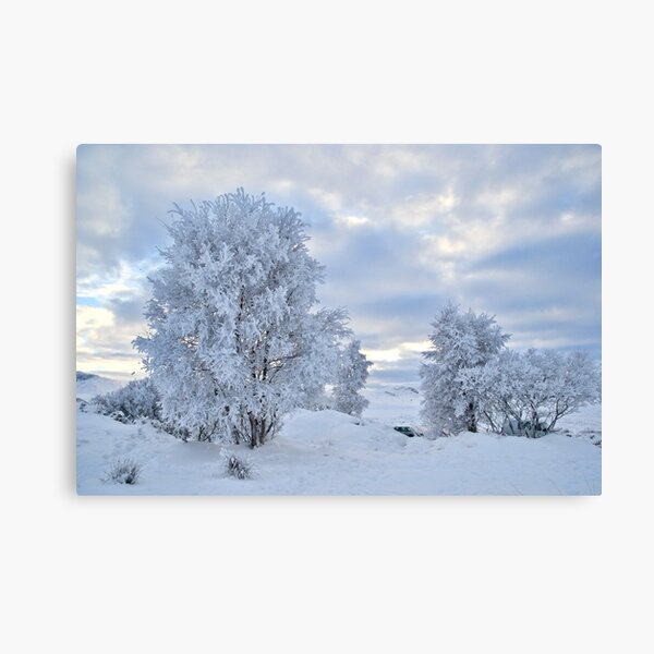 Winter Wonderland, Glencoe Canvas Print