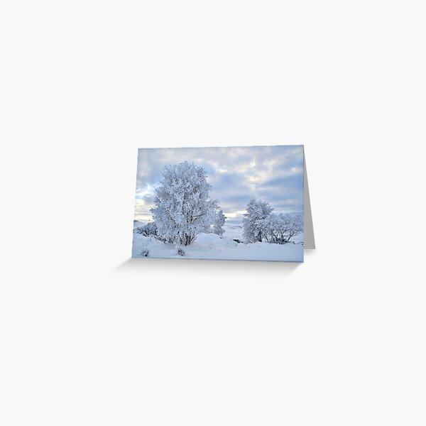 Winter Wonderland, Glencoe Greeting Card