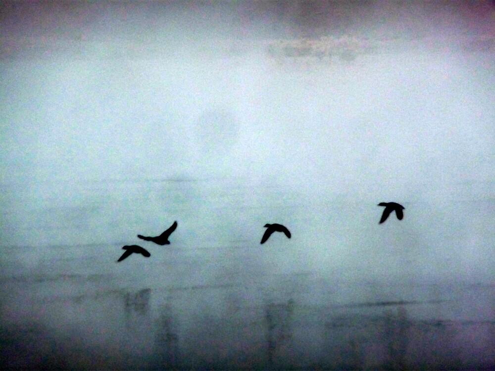 Flight in Fog by atoth