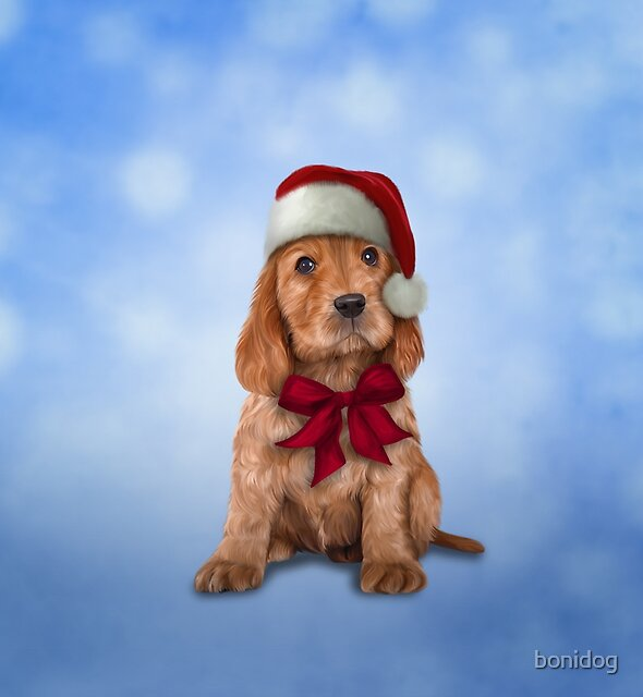 English Cocker Spaniel in red hat of Santa Claus by bonidog