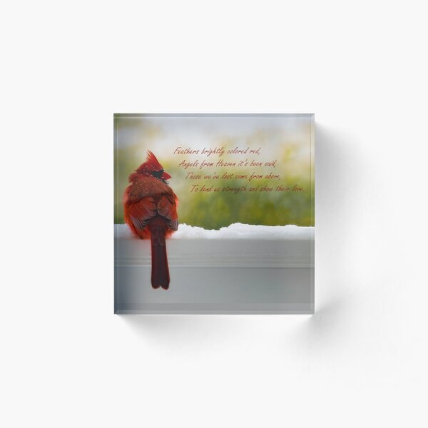 Male Cardinal - Visitor From Heaven quote Acrylic Block