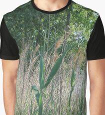 #nature #grass #landscape #outdoors #leaf #summer #wood #environment #tree #field #bright #season #horizontal #plant #nopeople #ruralscene #nonurbanscene #day Graphic T-Shirt