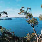 Lion island by karenanderson