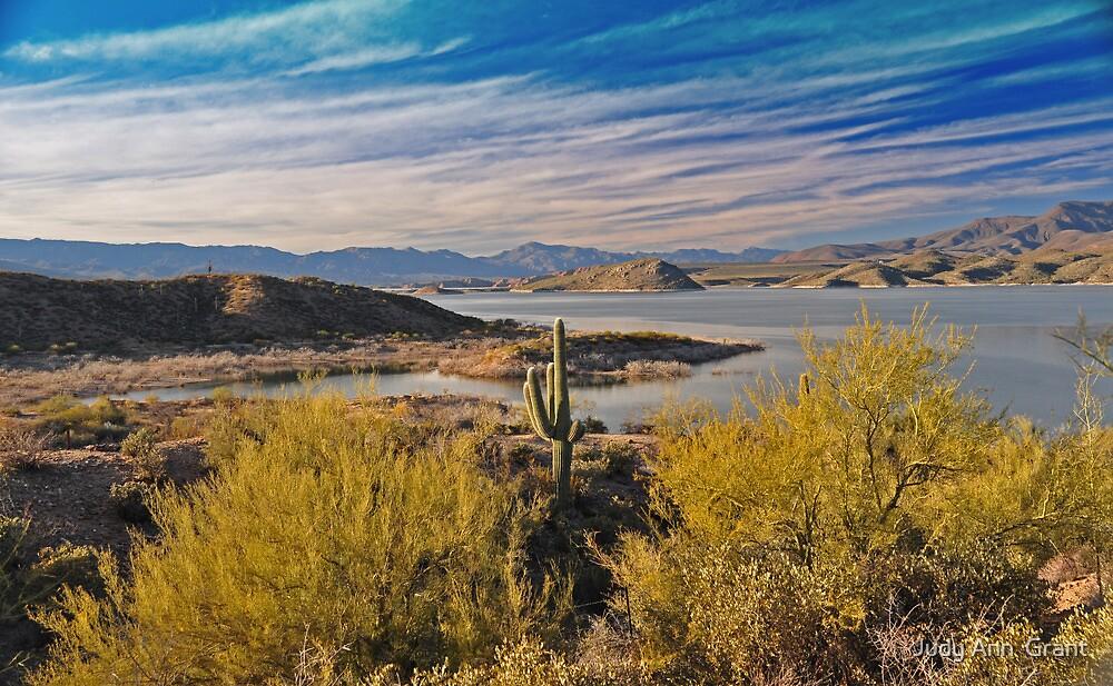 Roosevelt Lake Arizona  by Judy Ann  Grant