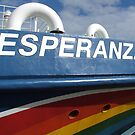 the esperanza by Art Action  Union