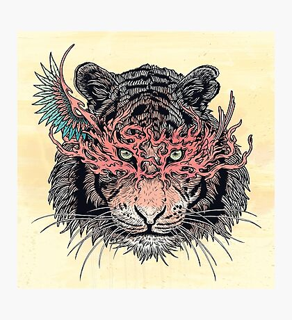 Masked Tiger Photographic Print