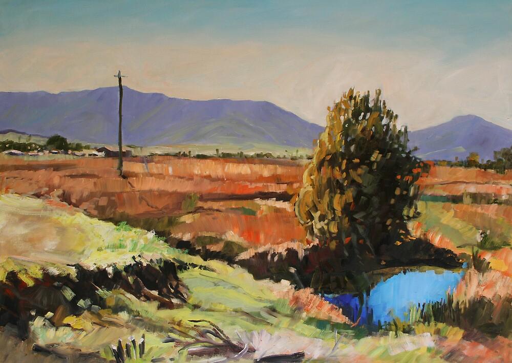 Emu Creek by Paul  Milburn