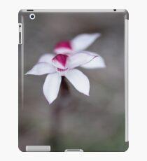 Elegant caladenia, near Meetus Falls, Tasmania iPad Case/Skin