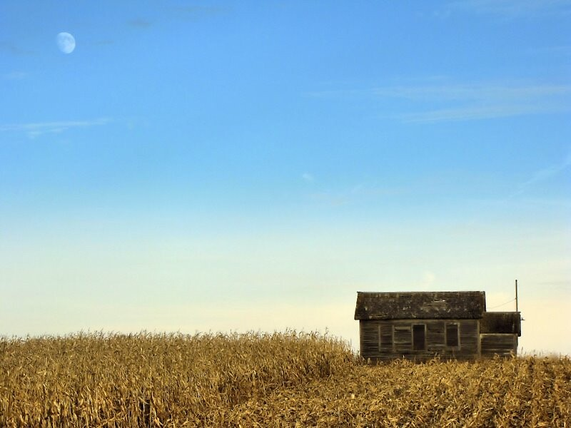 Harvest Moon by Becky39