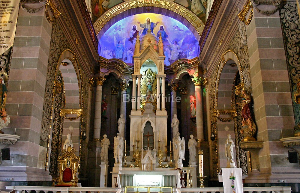 Cathedral of the Immaculate Conception, Mazatlan by Barb White