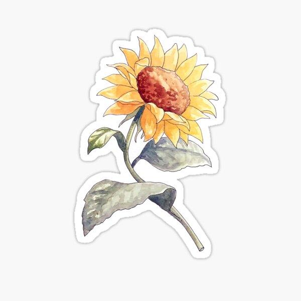 A Vintage Sunflower Illustration  Sticker
