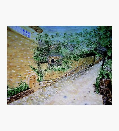 The Path by the Stone House  Photographic Print