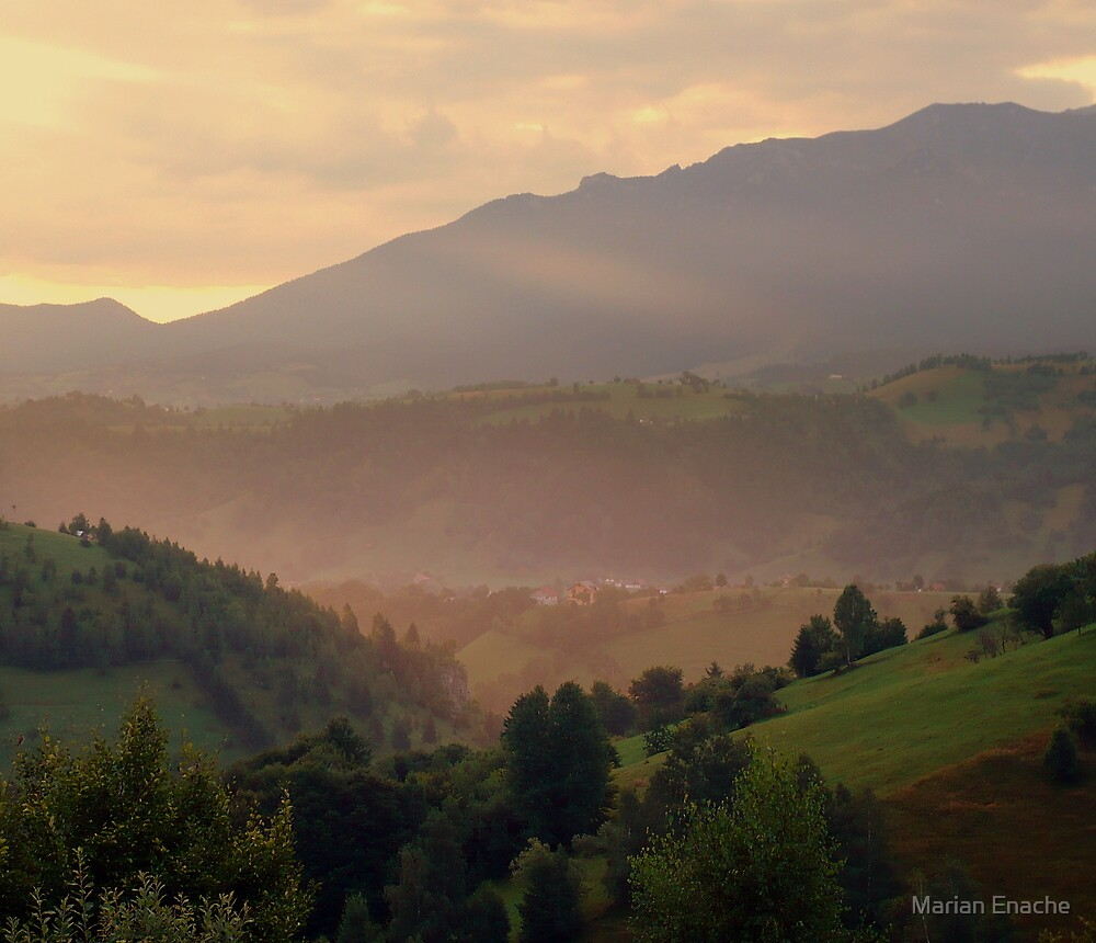 morning eyelid by Marian Enache