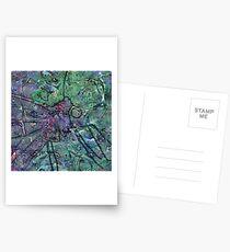 Lepidoptera 5 Postcards