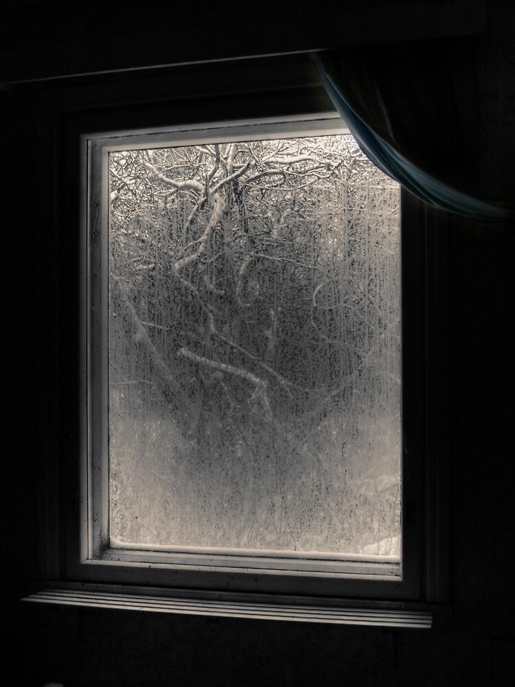 21.12.2009: Garden of Nightmares by Petri Volanen