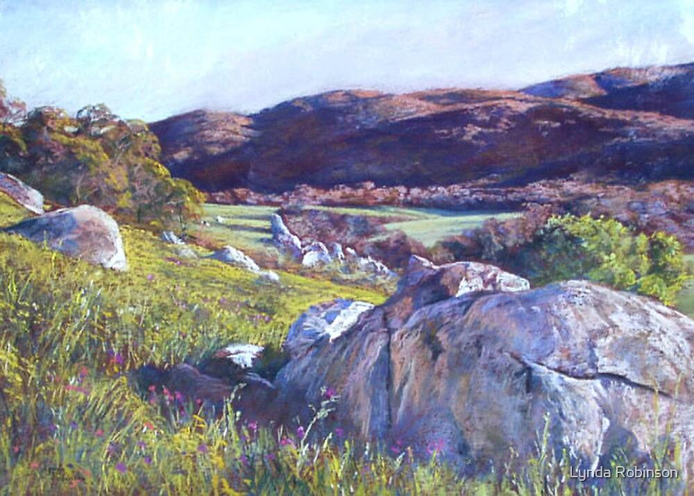 'Trawool Evening' by Lynda Robinson