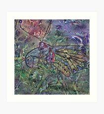 Lepidoptera 7 Art Print