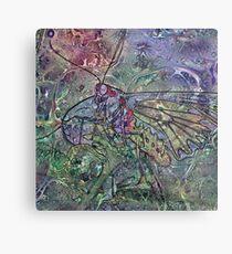Lepidoptera 7 Metal Print