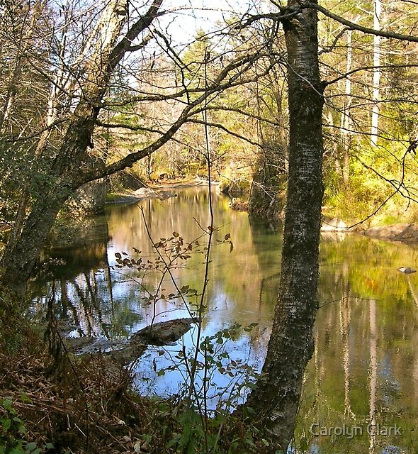 River and old bridge abutment 2 by Carolyn Clark