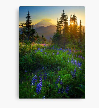 Mount Rainier Sunburst Canvas Print