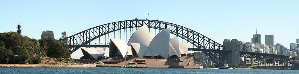 Sydney Dream by Shane Harris