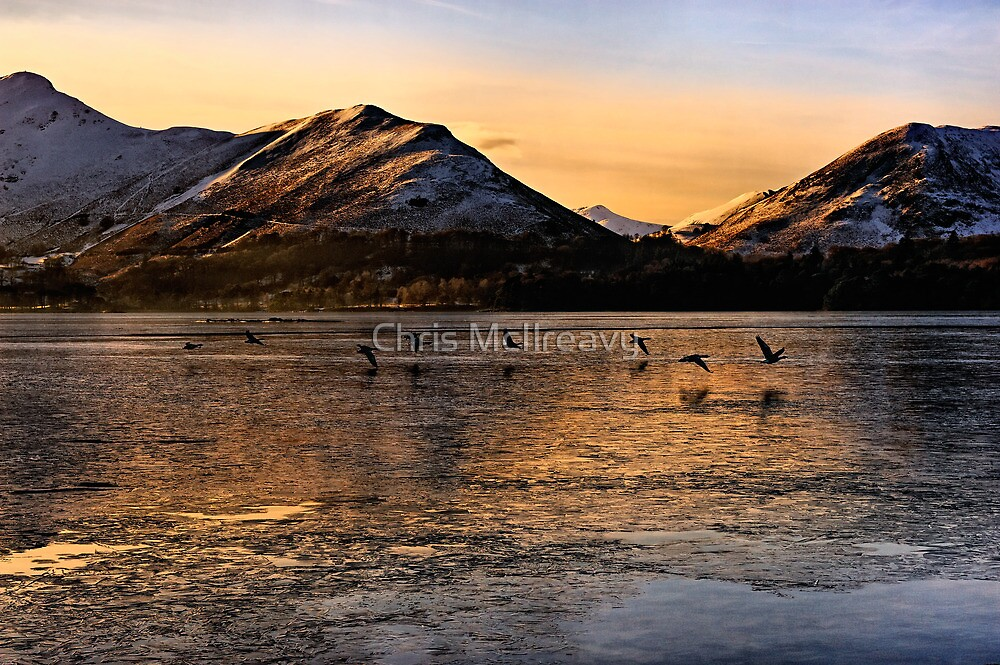 Wild Geese take flight from Derwent Water, Cumbria by Chris McIlreavy