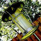 Birdfeeder in the Backyard by bigjason56
