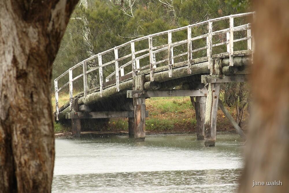 budgewoi bridge by jane walsh