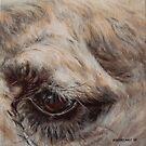 Pale camel eye by alstrangeways