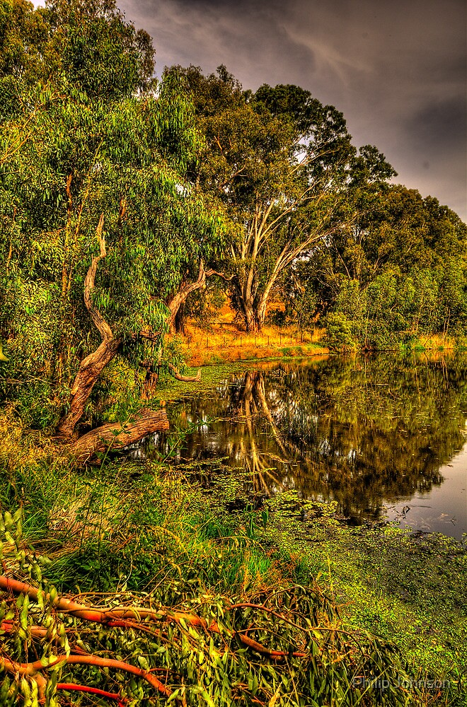 Murray River Reflections - Albury - The HDR Experience by Philip Johnson