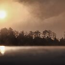 Foggy Morning Sunrise Severn River Virginia by Timothy Gass