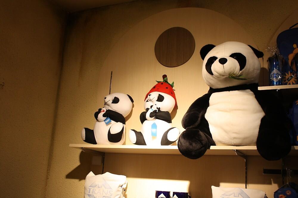 pandas hanging on the wall by Putri Astika