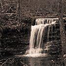 Lost Falls by Phillip M. Burrow
