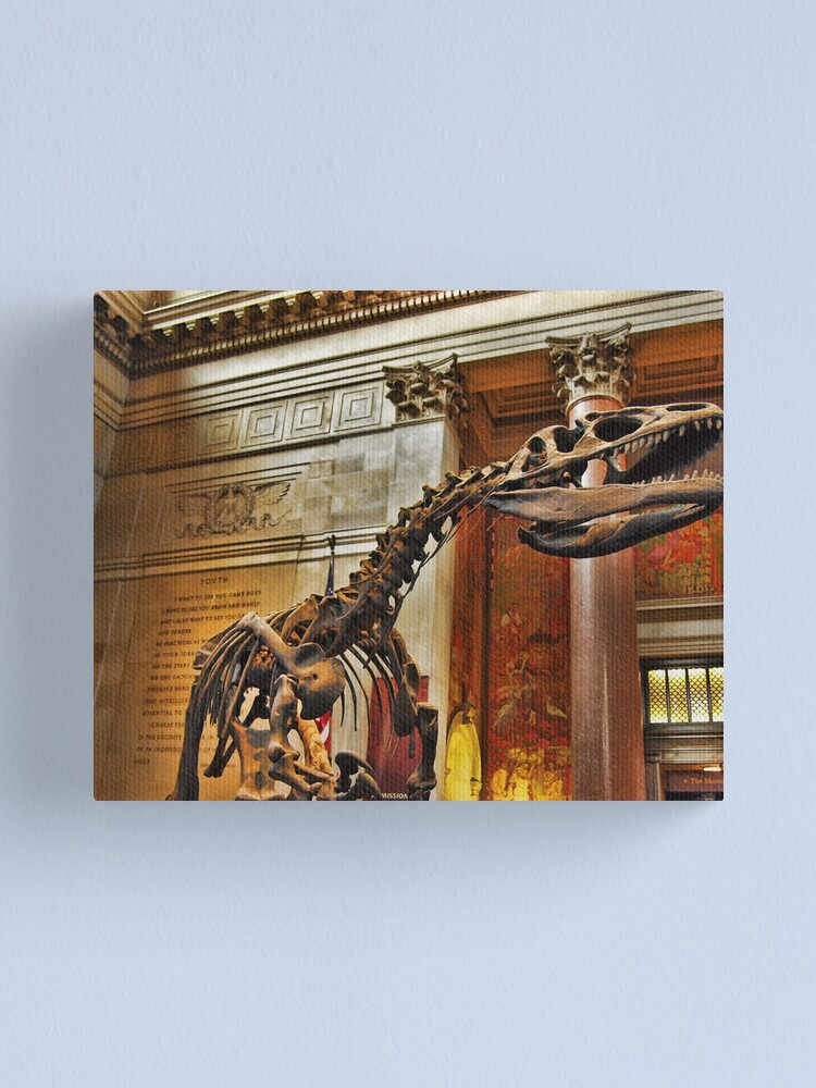 Alternate view of American Museum of Natural History Canvas Print