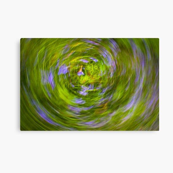 bluebell vortex Canvas Print