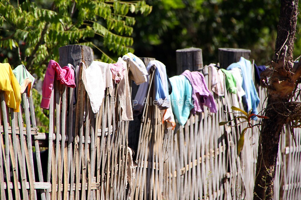 Fence or clothes line? by Philip Alexander
