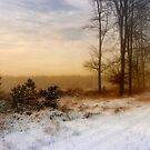 Christmas Eve in the Snow - 2 by Ann Garrett