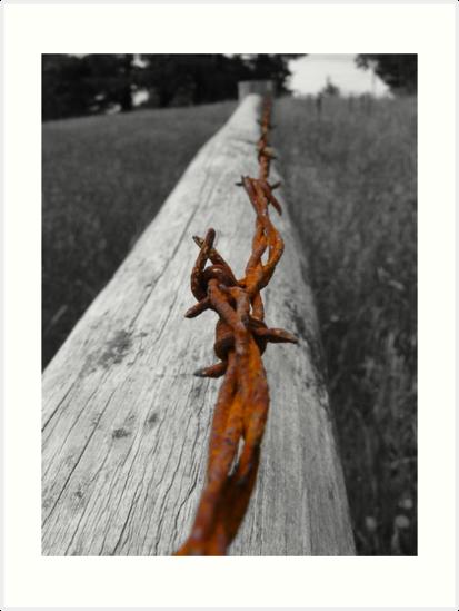 Thin Line by Steven Fraser