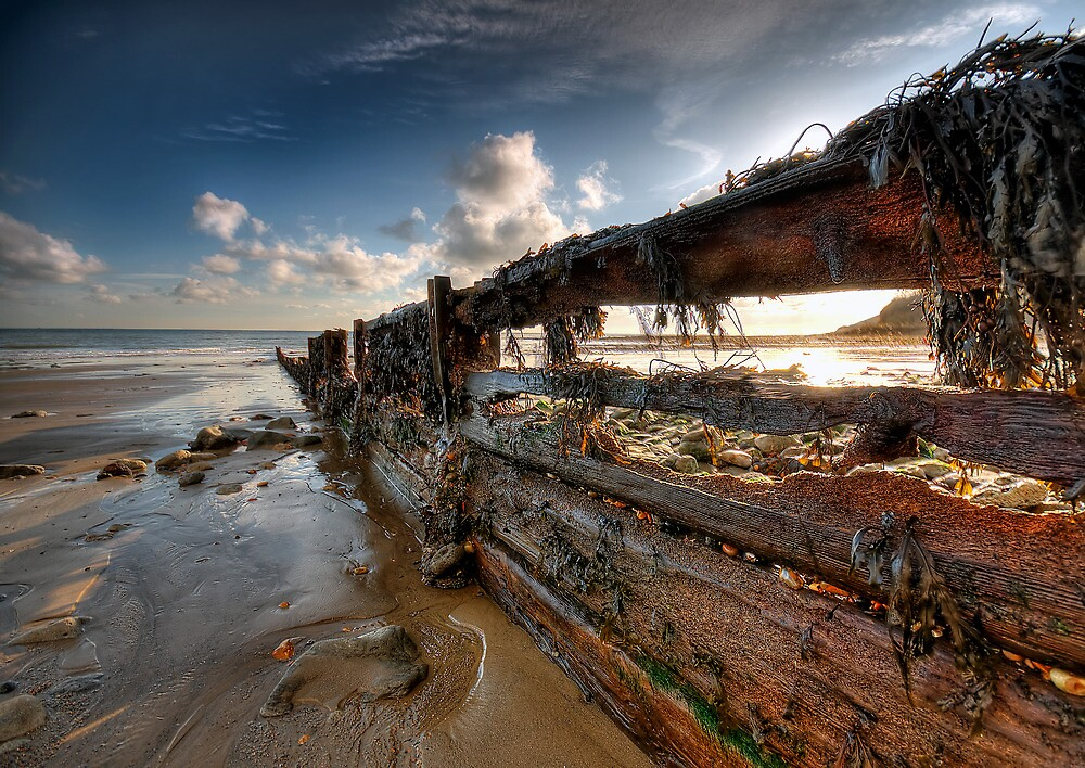 Surrendered Defences by Mat Mackenzie