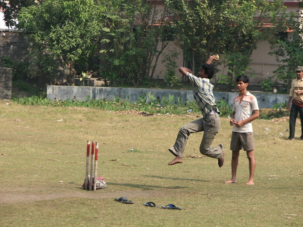 the game of cricket by jack robinson