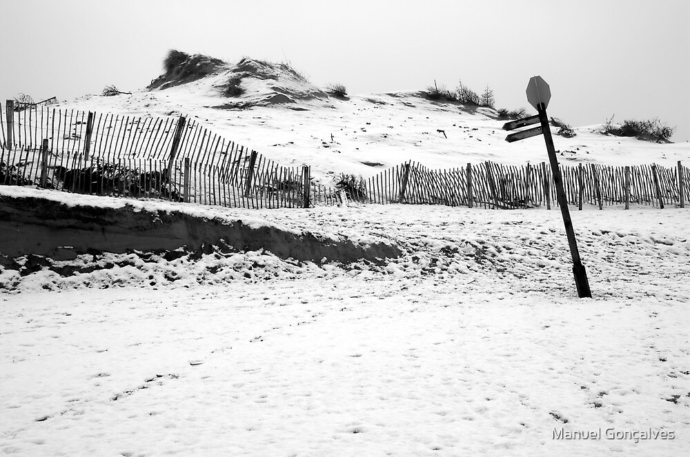 Snow at Formby Dunes by Manuel Gonçalves