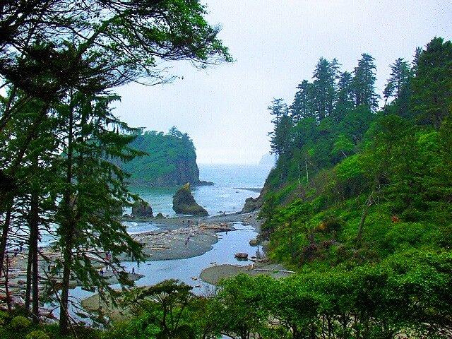 Coastal Wildlands by dustandrain