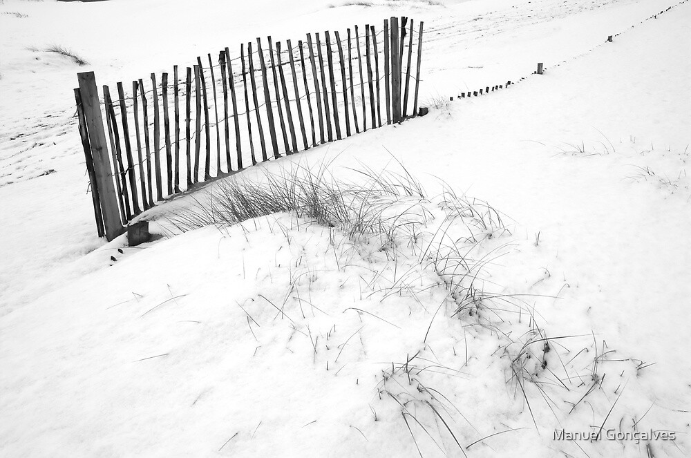 Snow at Formby Dunes III by Manuel Gonçalves